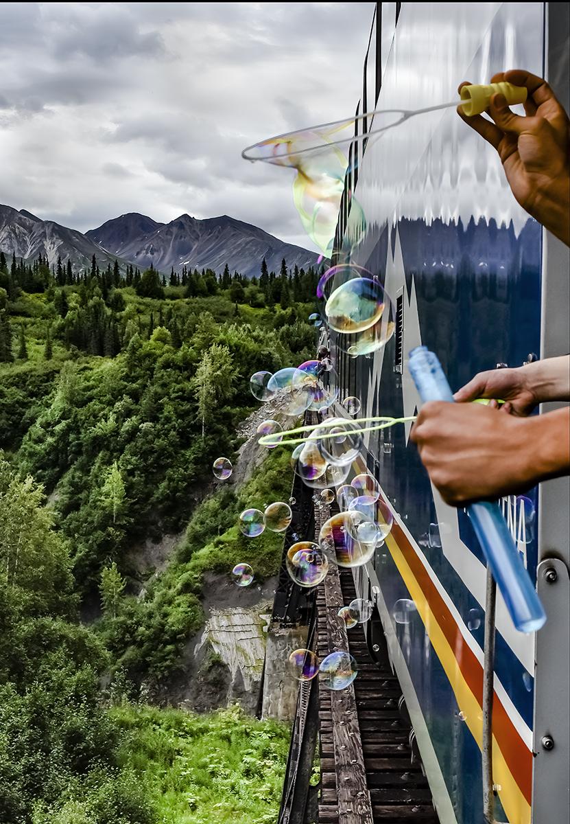 Denali Train Ride