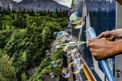 Denali Train Ride
