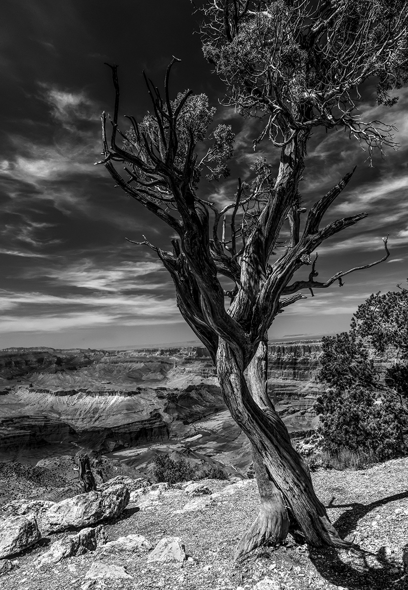Grand Canyon II in B&W