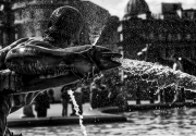 Trafalger-Sq-Fountain