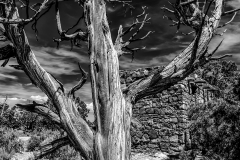 Grand Canyon III in B&W